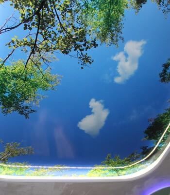 Натяжные потолки с фотопечатью, пример 1